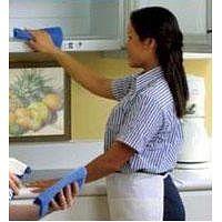 Niñera Agencia Domestica Cocinera Servicio Doméstico Cuidadora Recamarera Enfermera Nana