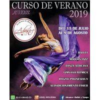 CURSO DE VERANO 2019
