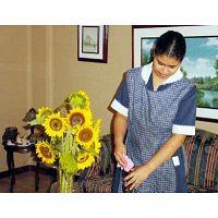 Cocinera Agencia Domestica Cuidadora Enfermera Servicio Domestico Niñera Nana Recamarera