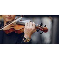 Música para FUNE RAL VELORIO Violín Violinista o Chelo Guadalajara Rosario Misa  Violín o Chelo y ac