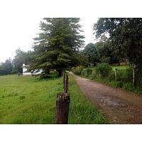 Terreno Plano ideal para rancho cerca de autopista llegando por Acatitlan, a 10 minutos de Avandaro.